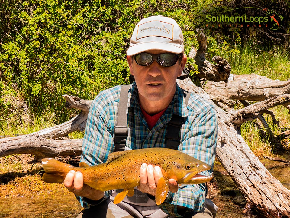 Epic brown trout on a dry fly - Filo Hua Hum River.