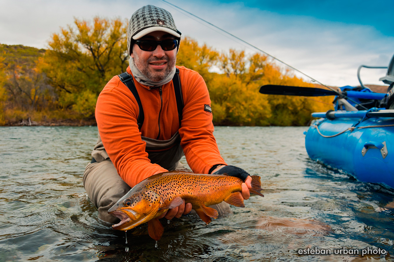 Fall season coloured brown trout on the chimehuin river