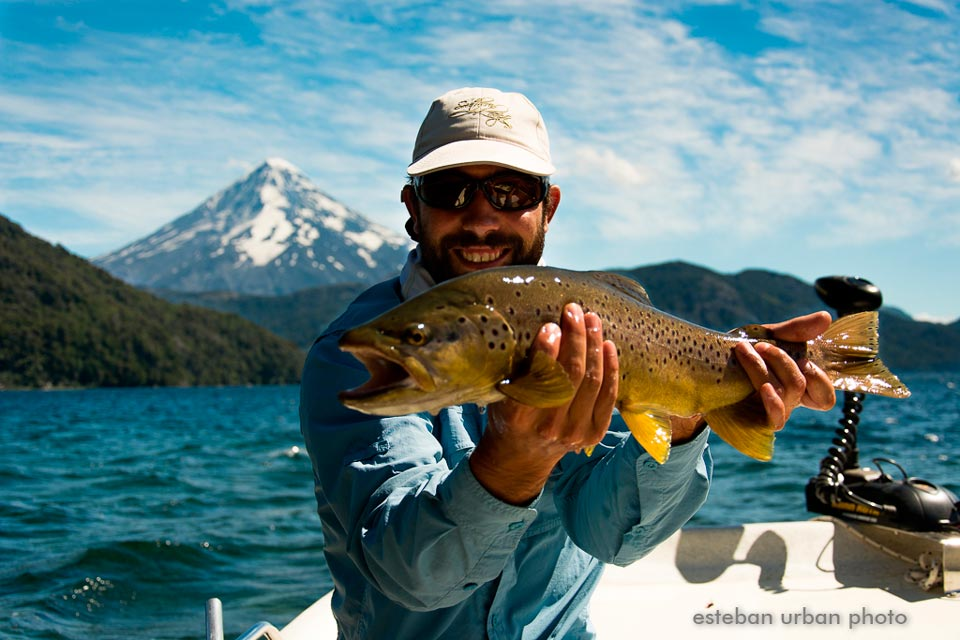 Tromen Lake Brown trout caught on a chubby - Lanin Volcano at the back.